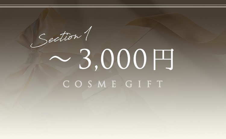 Section1 ~3,000円 COSME GIFT